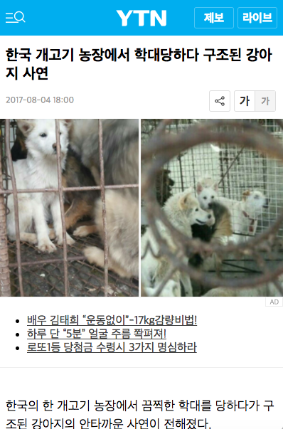 Ban Dog Meat – Site Title